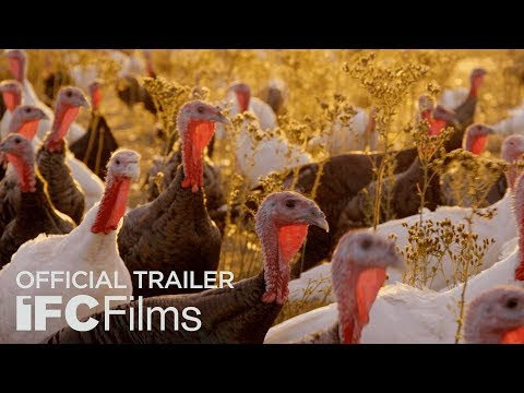 Eating Animals - Official Trailer | HD | IFC Films