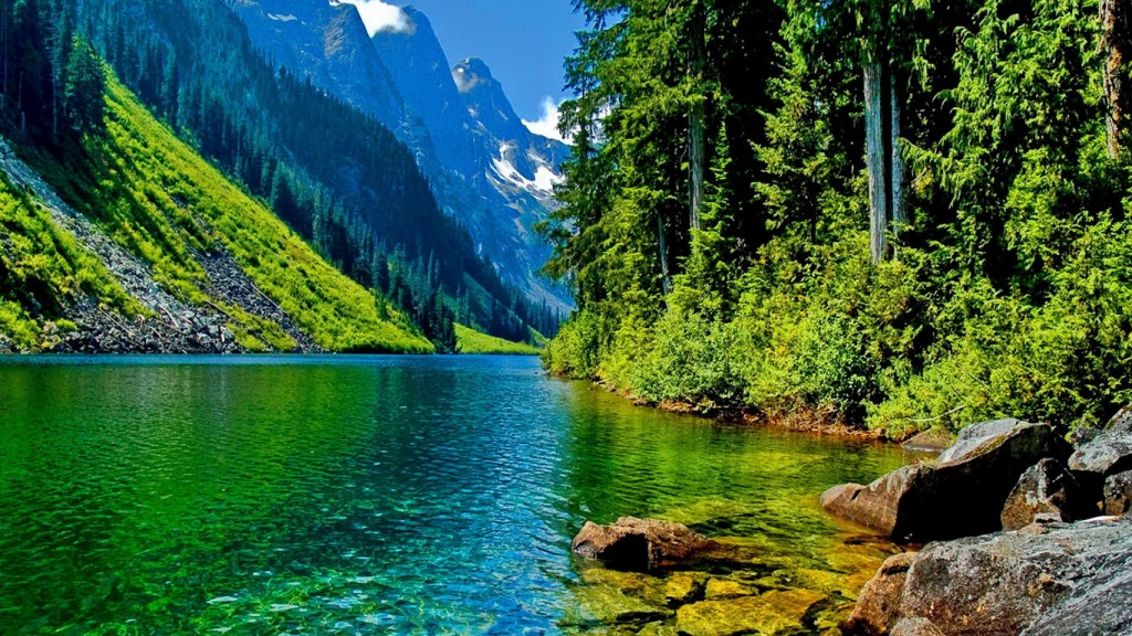 High Definition Nature Wallpapers 33 1366x768