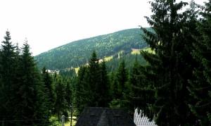 Vineri dimineața, la Panoramic