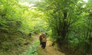 Urcarea spre Cetatea Colţ