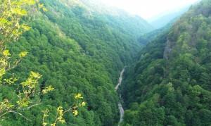 Valea care duce la Râuşor